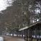 Bois de Bourgogne